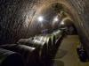 Czech winery